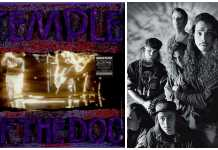 temple of the dog call me a dog